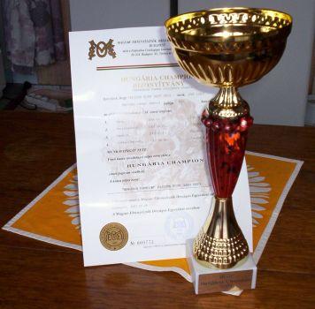 Diplom a pohár za šampióna HU