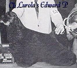 Ch Lurola´s Edward P