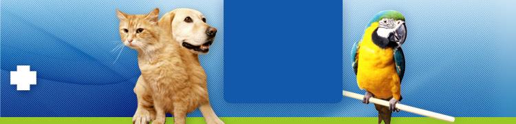 náš veterinár Bajvet